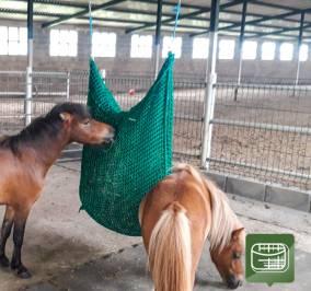 Red Bolsillo Doble para caballo americano miniatura