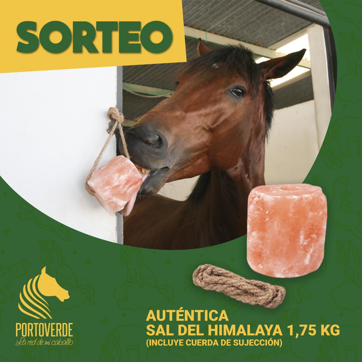Sorteo piedra de sal del Himalaya Portoverde