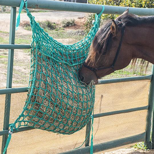 red slow feeder para heno de caballo