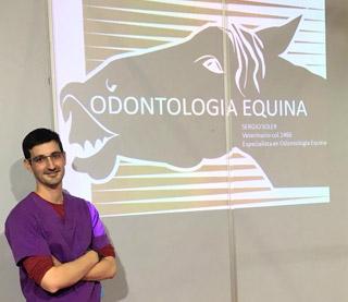 cuidado dental caballo odontólogo equino