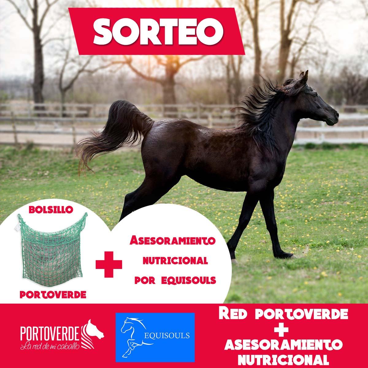 Sorteo Portoverde y Equisouls