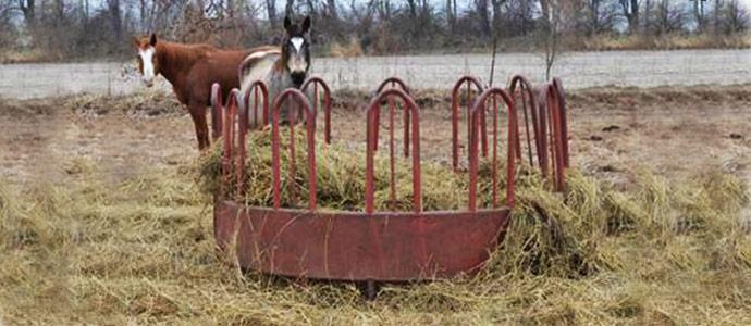 Cómo evitar las pérdidas de heno en la alimentación del caballo